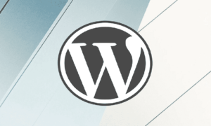 Preventivo Sito WordPress